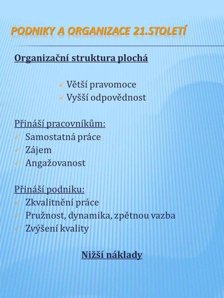 Podniky a organizace 21.století .