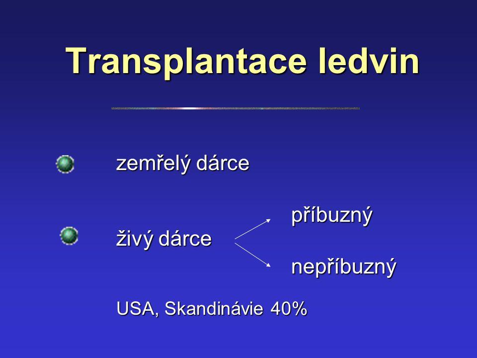 Transplantace ledvin zemřelý dárce příbuzný živý dárce nepříbuzný