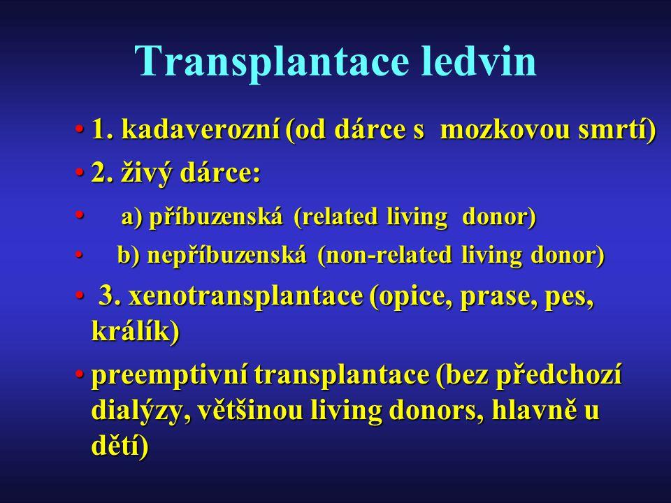 Transplantace ledvin 1. kadaverozní (od dárce s mozkovou smrtí)