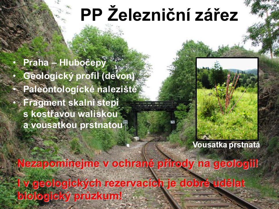 PP Železniční zářez Nezapomínejme v ochraně přírody na geologii!