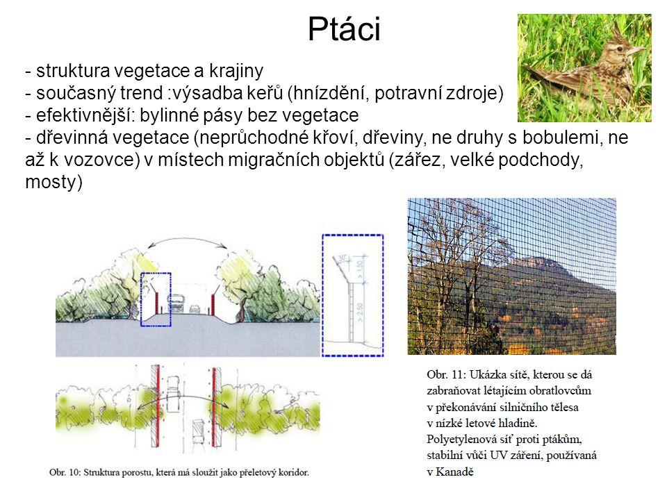 Ptáci - struktura vegetace a krajiny