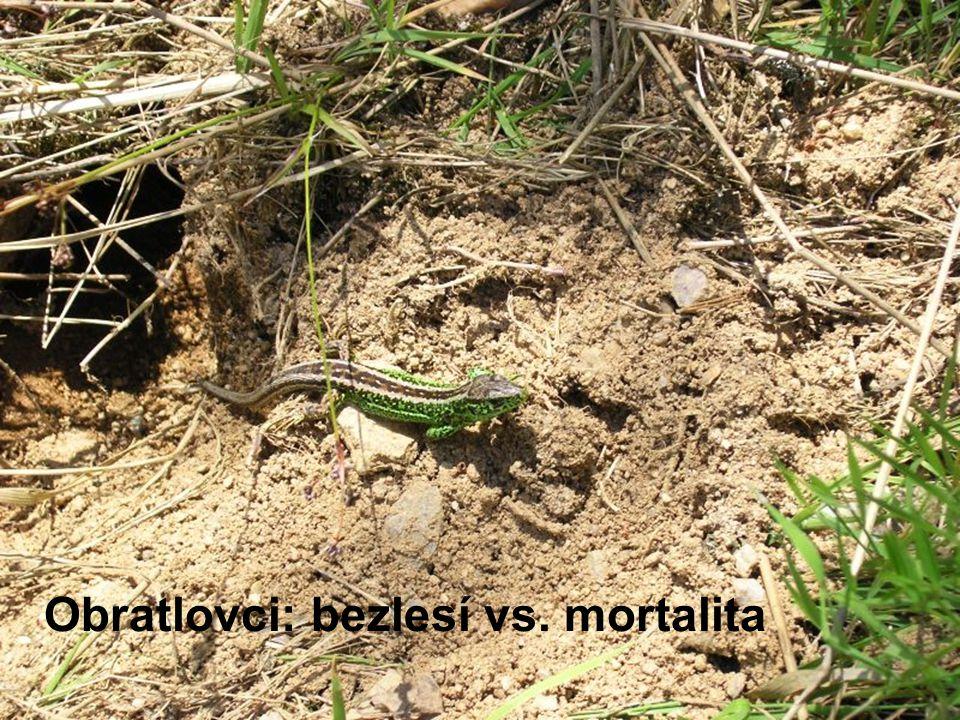 Obratlovci: bezlesí vs. mortalita