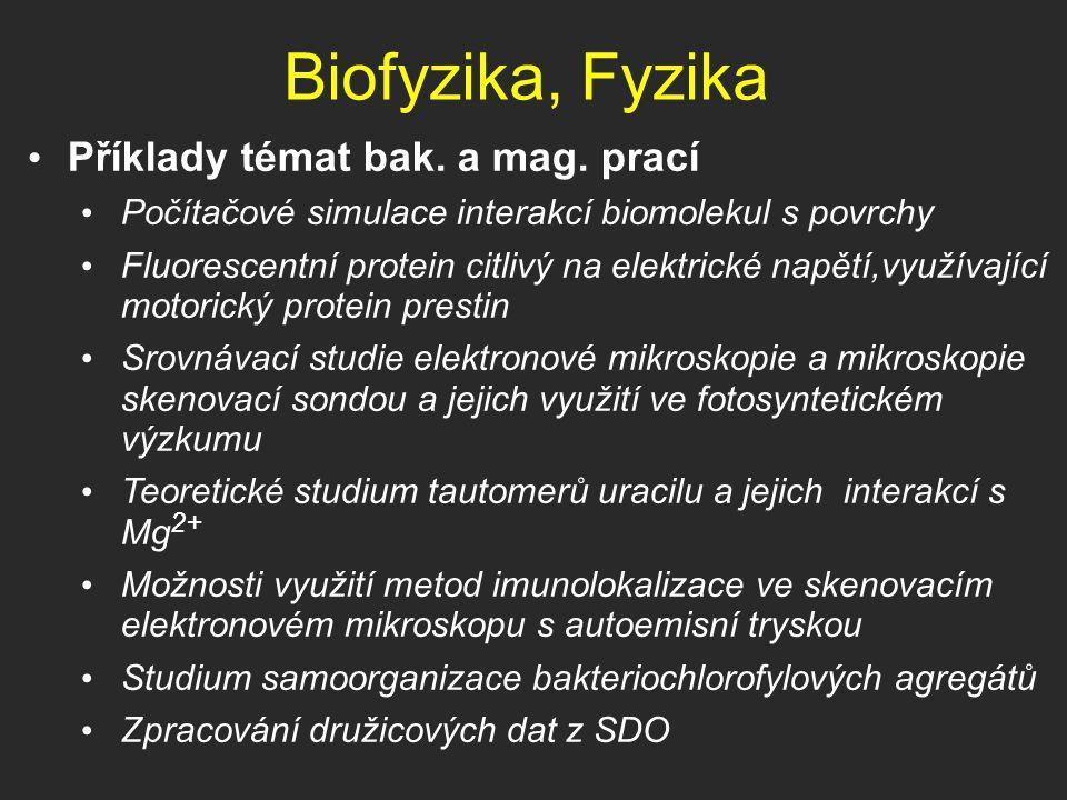 Biofyzika, Fyzika Příklady témat bak. a mag. prací