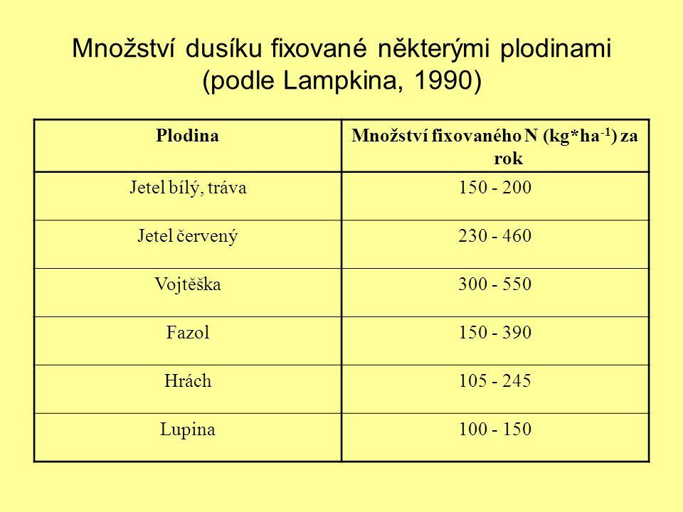 Množství dusíku fixované některými plodinami (podle Lampkina, 1990)