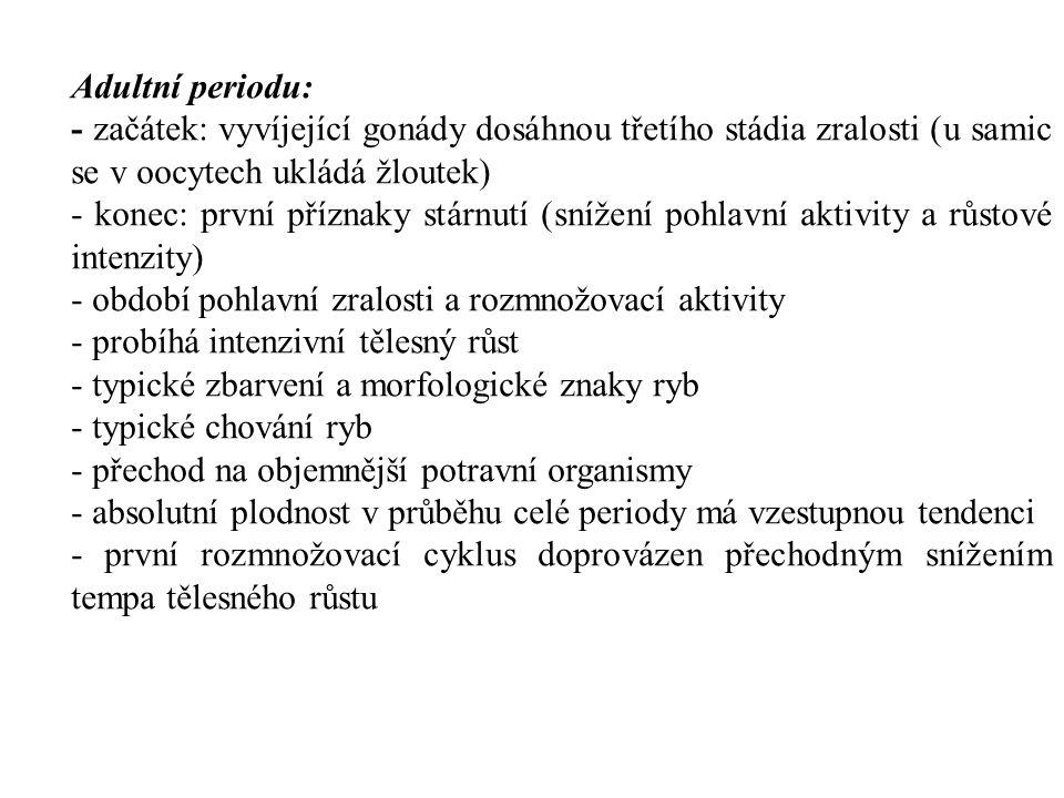 Adultní periodu: - začátek: vyvíjející gonády dosáhnou třetího stádia zralosti (u samic se v oocytech ukládá žloutek)
