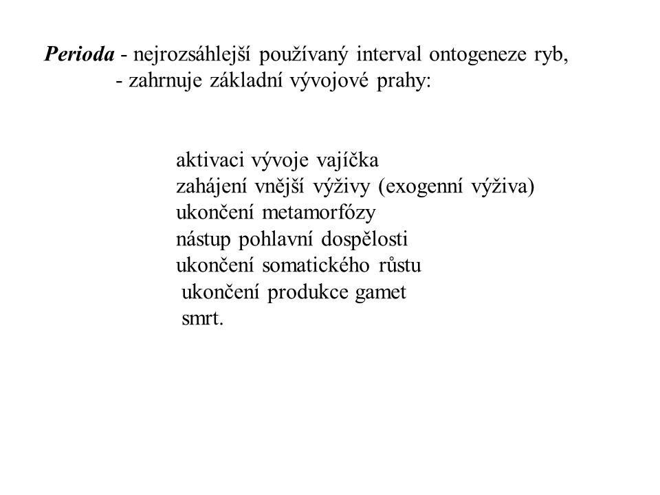 Perioda - nejrozsáhlejší používaný interval ontogeneze ryb,