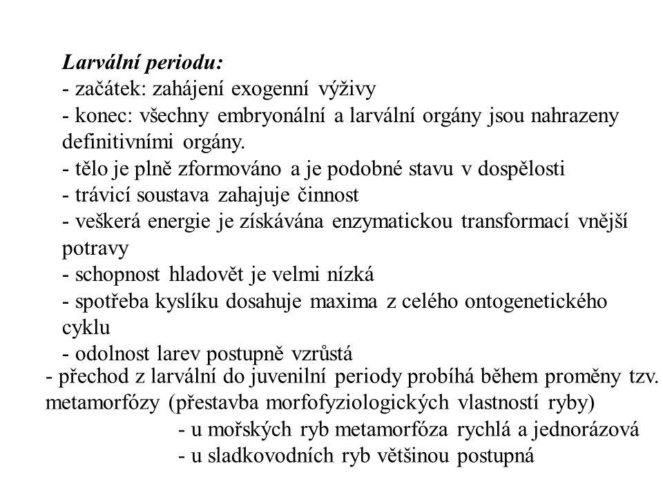 Larvální periodu: - začátek: zahájení exogenní výživy. - konec: všechny embryonální a larvální orgány jsou nahrazeny definitivními orgány.
