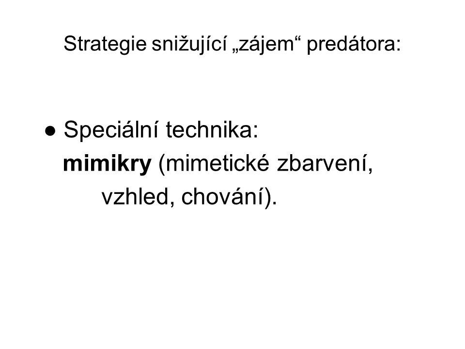 "Strategie snižující ""zájem predátora:"