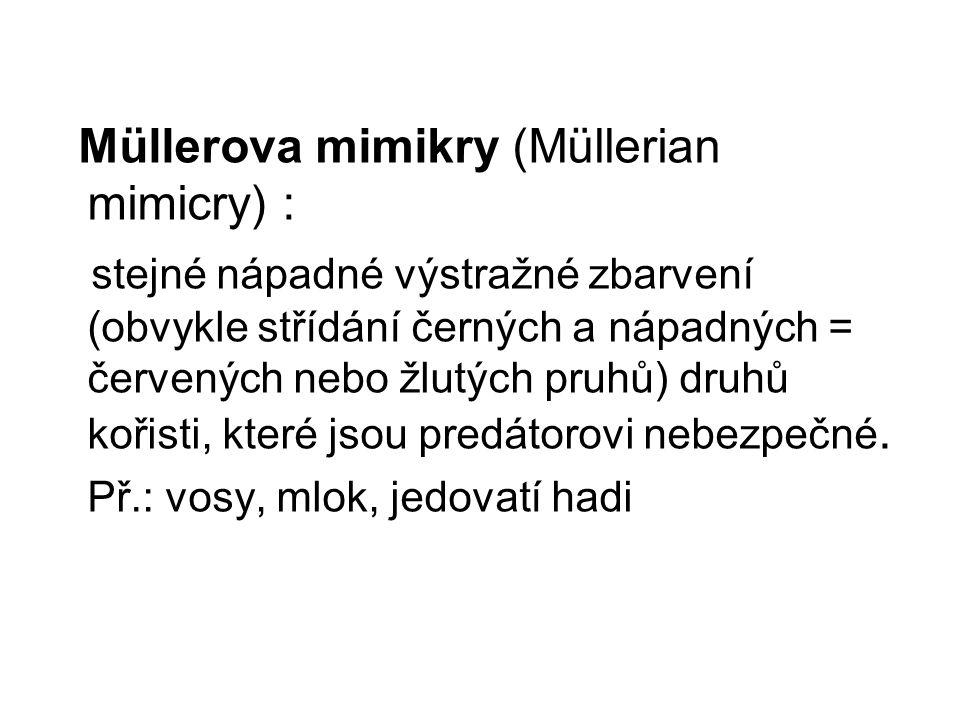 Müllerova mimikry (Müllerian mimicry) :