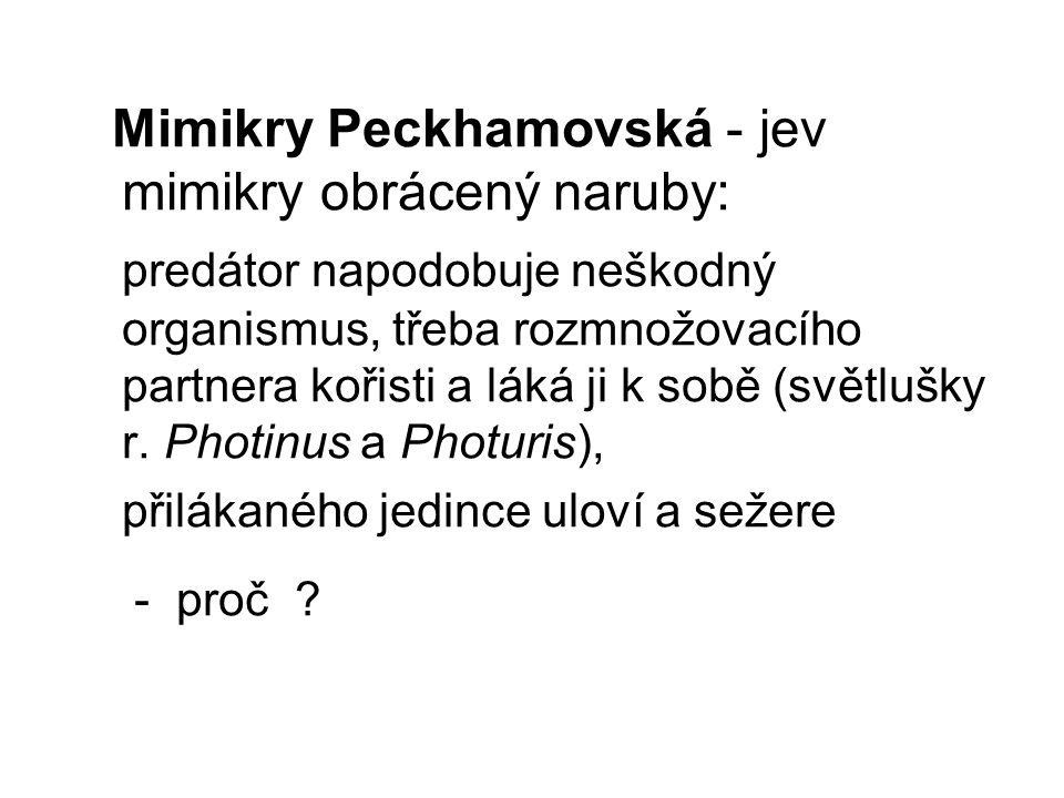 Mimikry Peckhamovská - jev mimikry obrácený naruby: