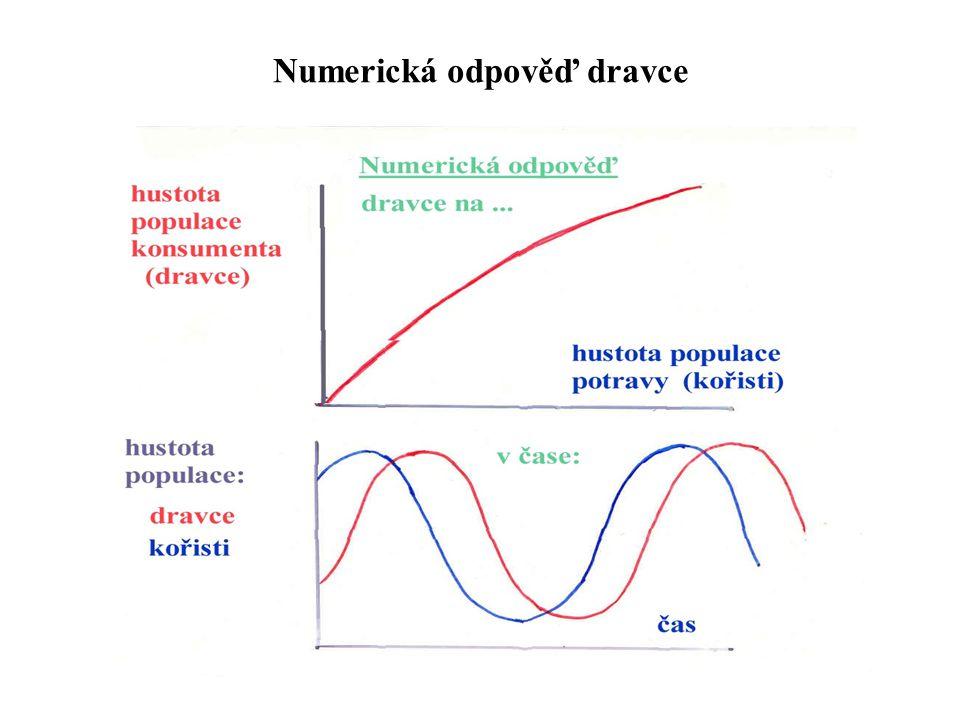 Numerická odpověď dravce