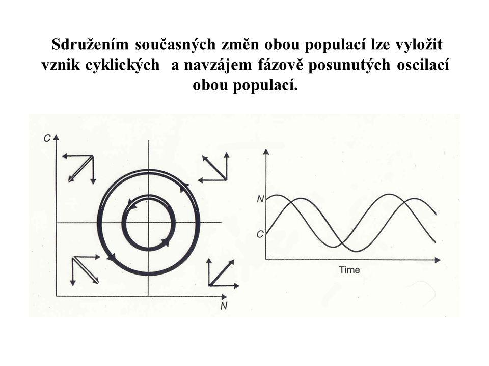 Sdružením současných změn obou populací lze vyložit vznik cyklických a navzájem fázově posunutých oscilací obou populací.