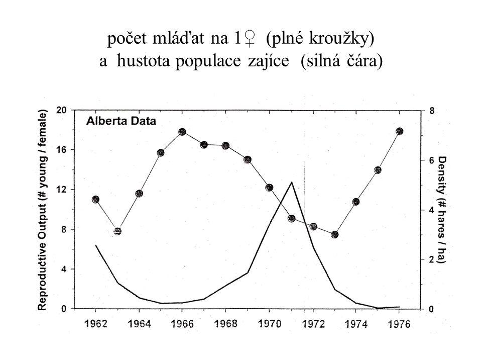 počet mláďat na 1♀ (plné kroužky) a hustota populace zajíce (silná čára)