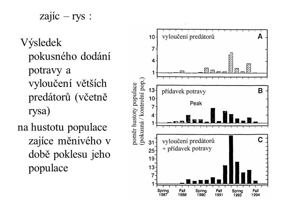 zajíc – rys : Výsledek pokusného dodání potravy a vyloučení větších predátorů (včetně rysa)