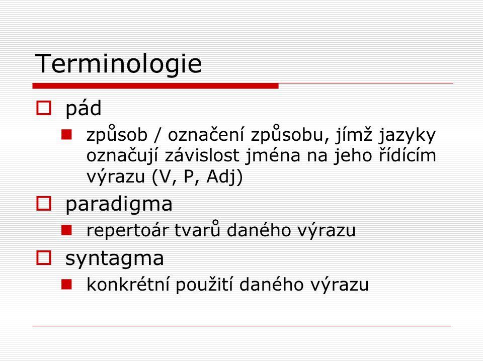 Terminologie pád paradigma syntagma