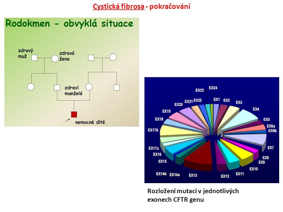 Cystická fibrosa - pokračování