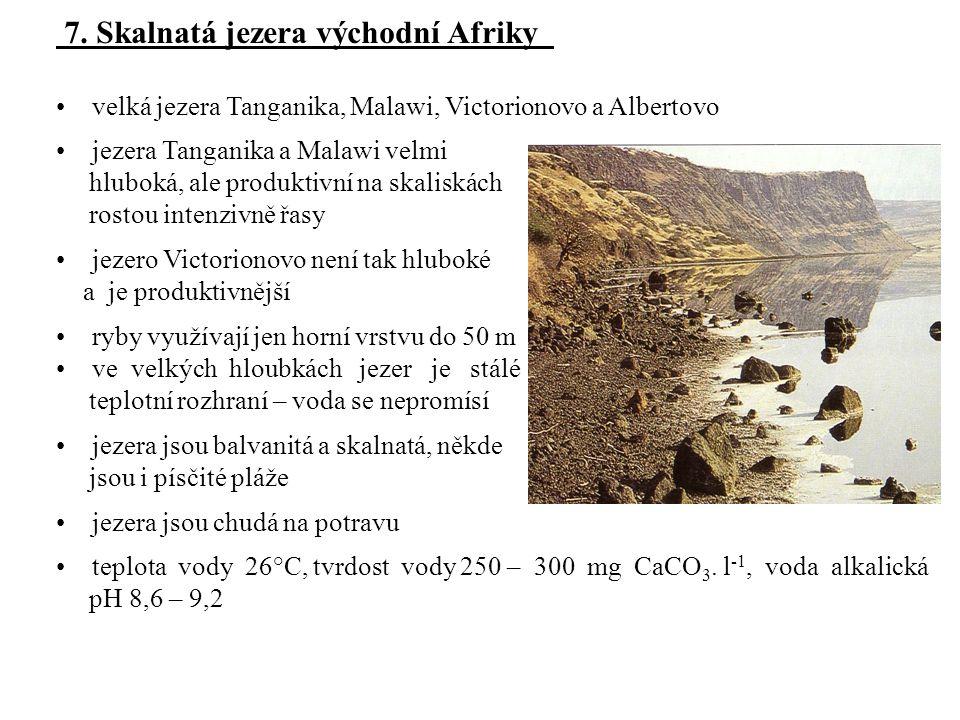 7. Skalnatá jezera východní Afriky
