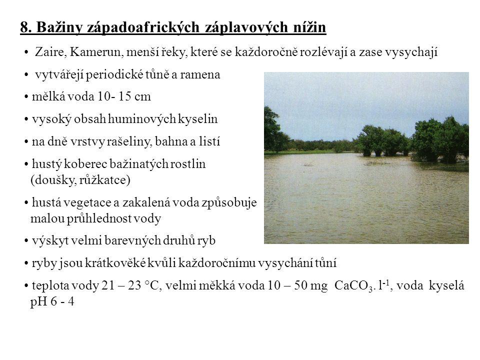 8. Bažiny západoafrických záplavových nížin