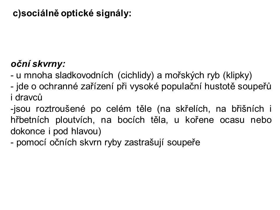 c)sociálně optické signály: