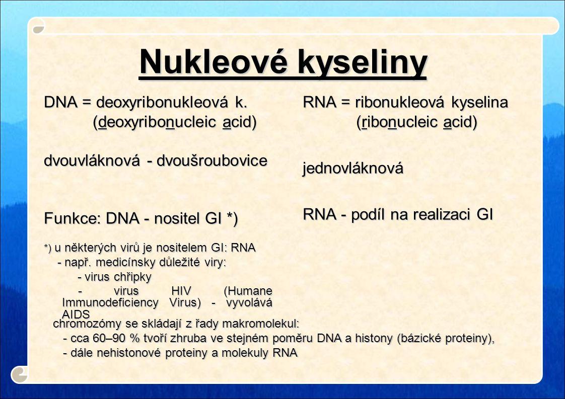 Nukleové kyseliny DNA = deoxyribonukleová k. (deoxyribonucleic acid)