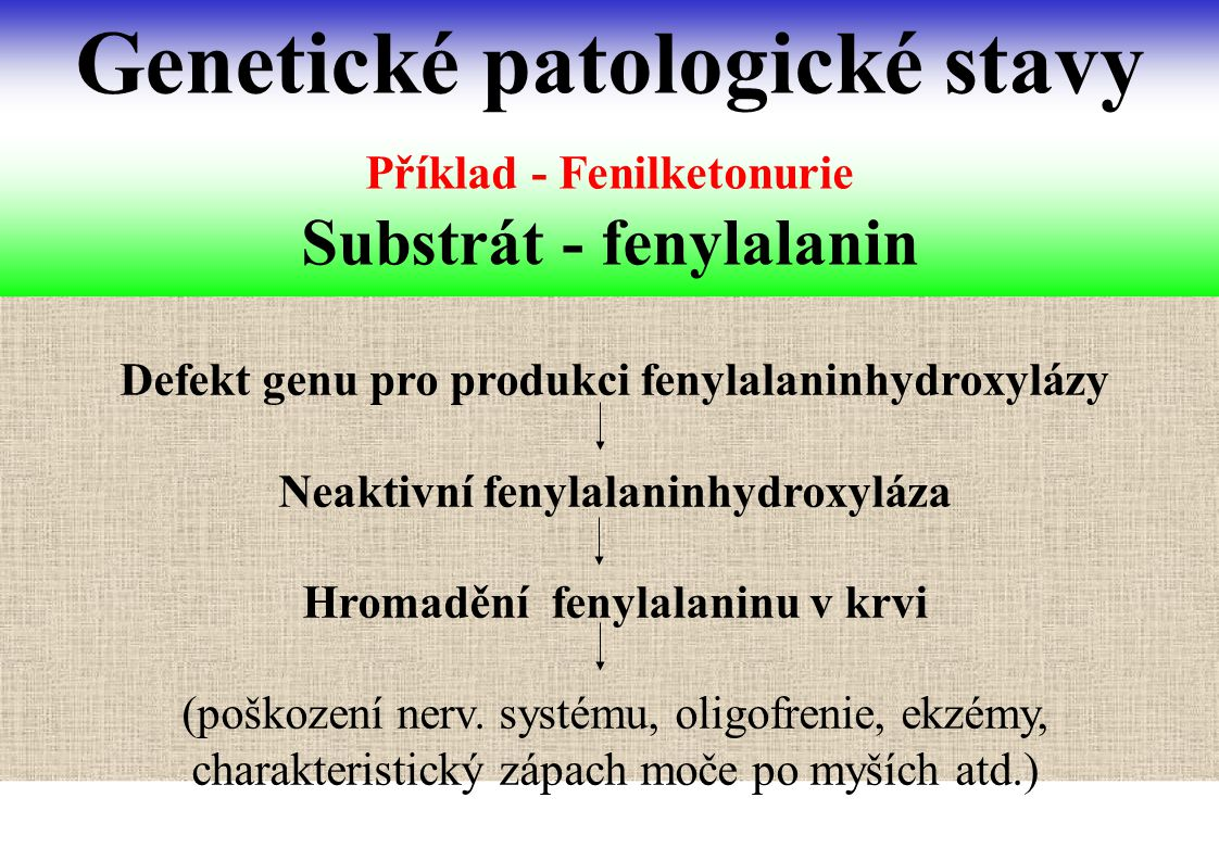 Příklad - Fenilketonurie Substrát - fenylalanin