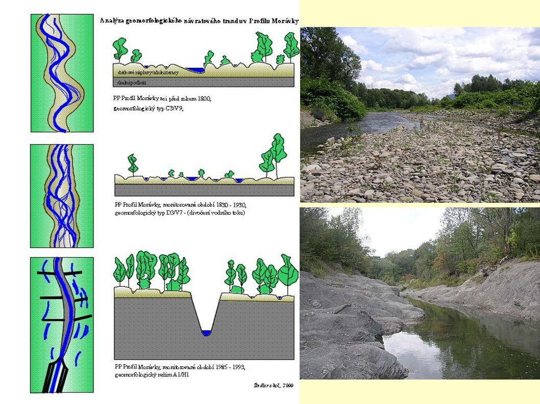Něco pro přírodu PP Profil Morávky - zahloubené koryto vzniklo nutností držet vodu v úzkém profilu (vedení potrubí)