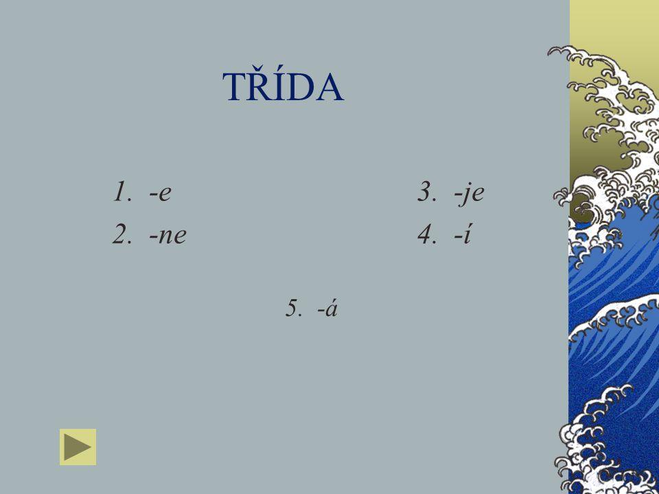 TŘÍDA 1. -e 3. -je 2. -ne 4. -í 5. -á