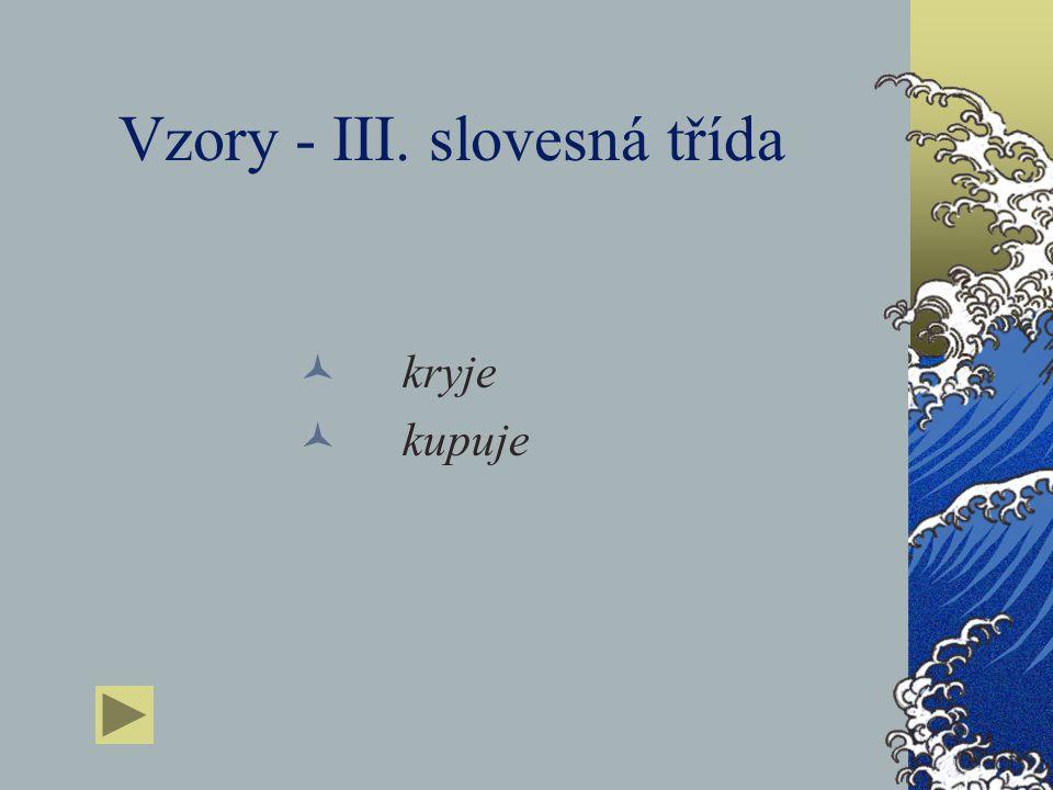 Vzory - III. slovesná třída
