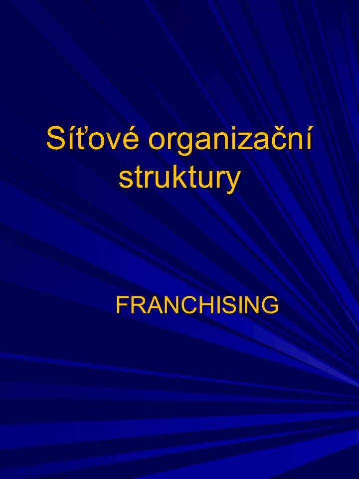 Síťové organizační struktury