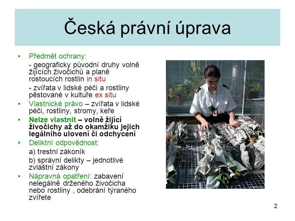 Česká právní úprava Předmět ochrany: