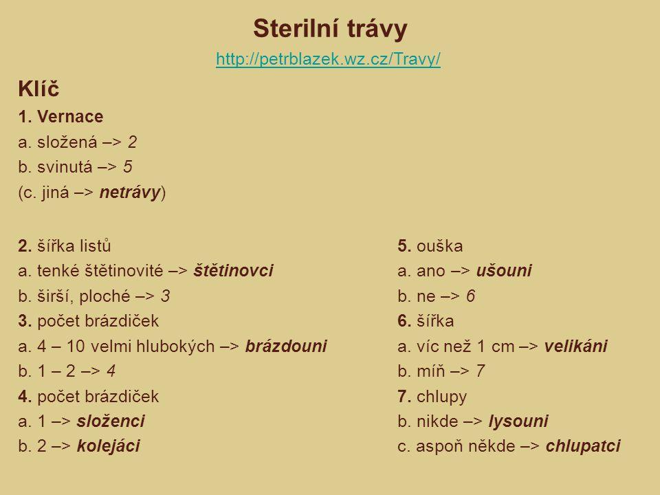 Sterilní trávy Klíč http://petrblazek.wz.cz/Travy/ 1. Vernace