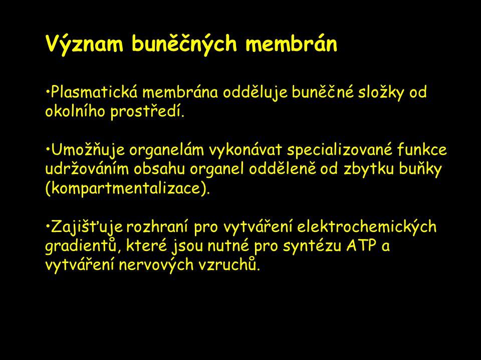 Význam buněčných membrán
