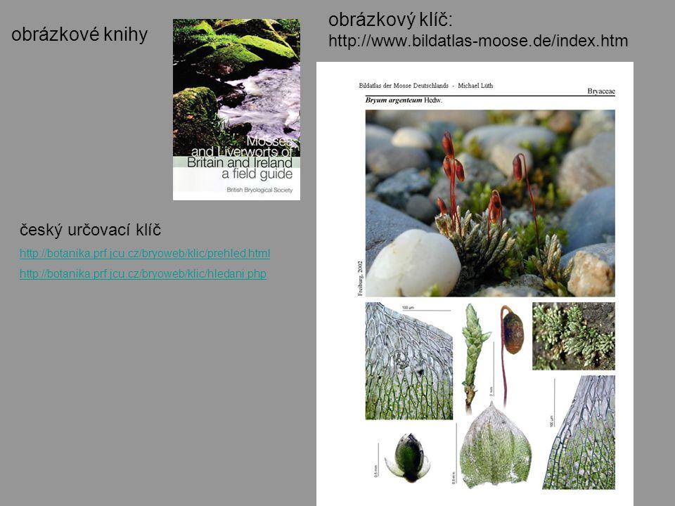 obrázkový klíč: http://www.bildatlas-moose.de/index.htm