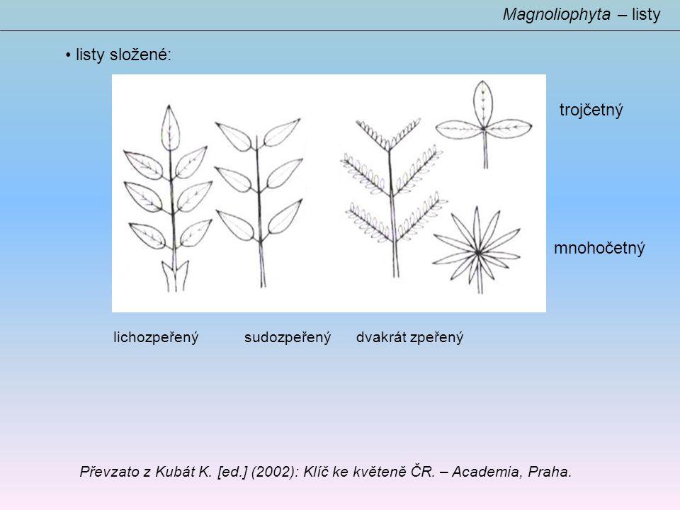 Magnoliophyta – listy listy složené: trojčetný mnohočetný