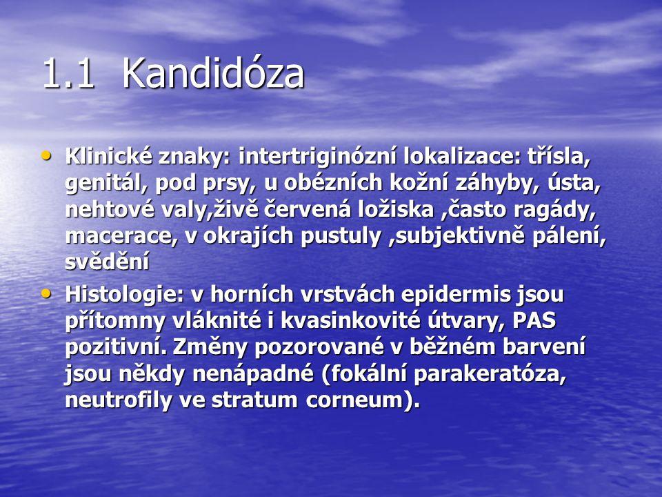 1.1 Kandidóza