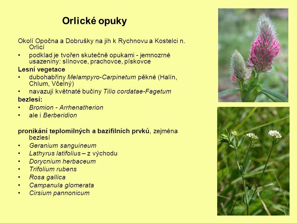 Orlické opuky Okolí Opočna a Dobrušky na jih k Rychnovu a Kostelci n. Orlicí.
