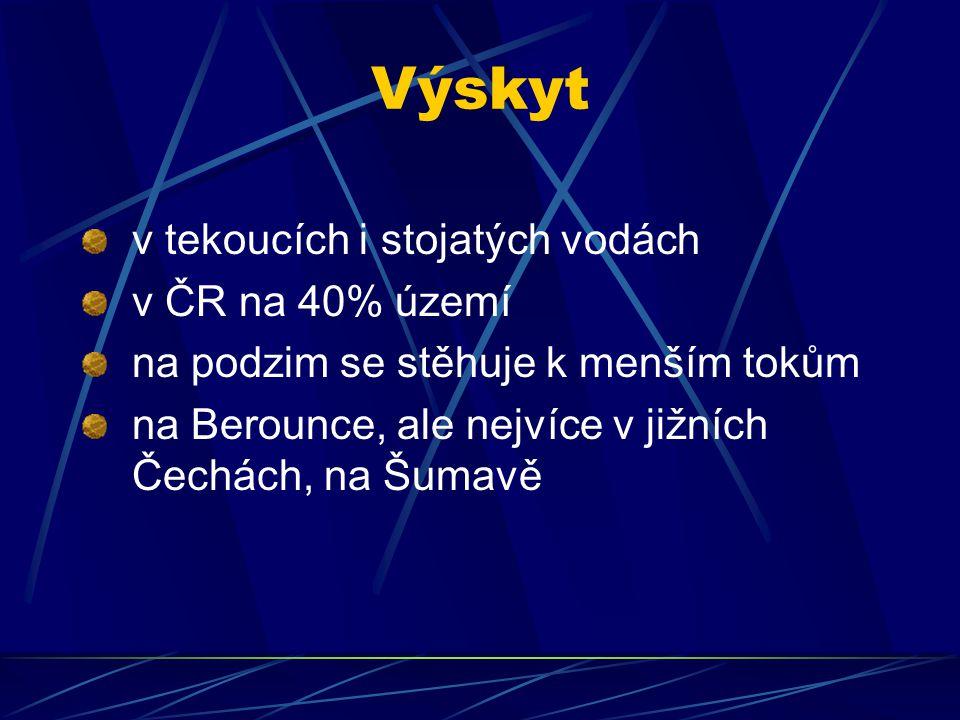 Výskyt v tekoucích i stojatých vodách v ČR na 40% území