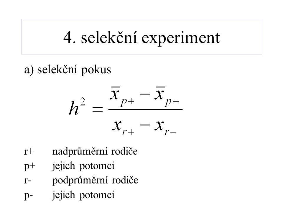 4. selekční experiment a) selekční pokus r+ nadprůměrní rodiče