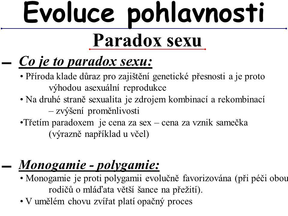 Evoluce pohlavnosti Paradox sexu Co je to paradox sexu: