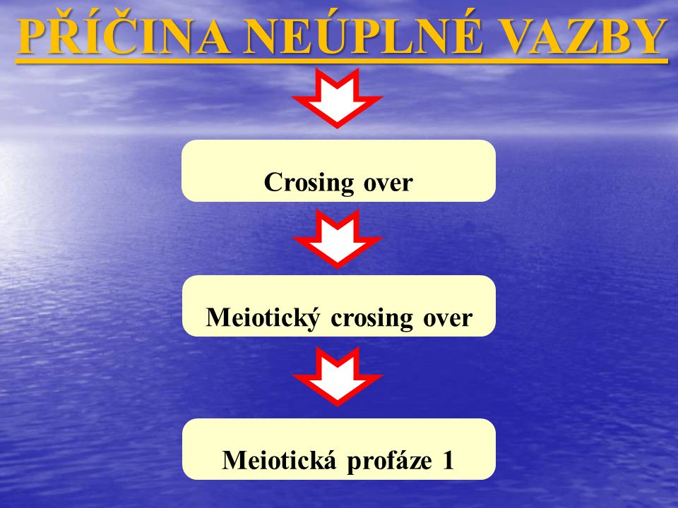 Meiotický crosing over