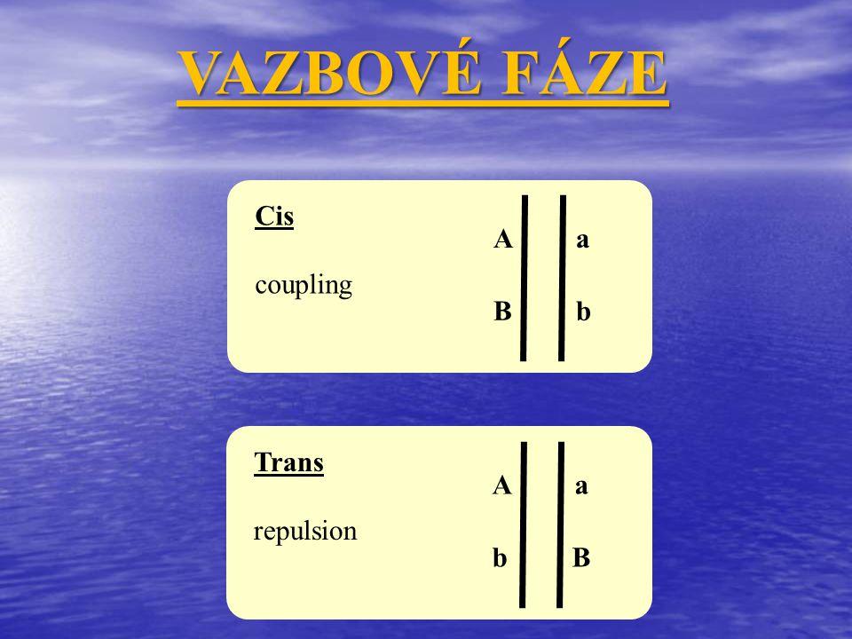 VAZBOVÉ FÁZE Cis coupling A a B b Trans repulsion A a b B