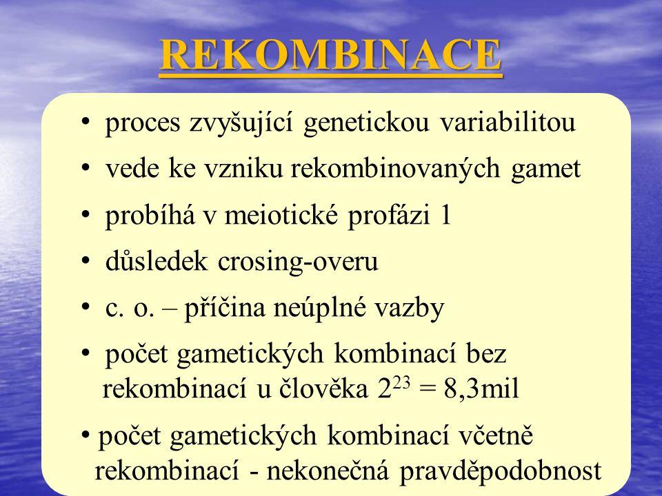 REKOMBINACE proces zvyšující genetickou variabilitou