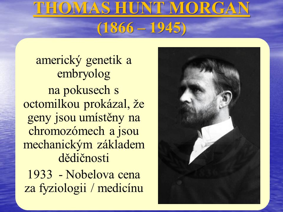 THOMAS HUNT MORGAN (1866 – 1945) americký genetik a embryolog