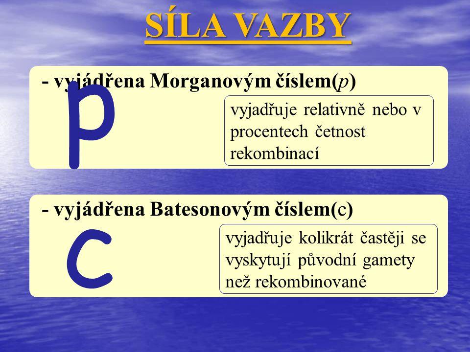 p c SÍLA VAZBY - vyjádřena Morganovým číslem(p)