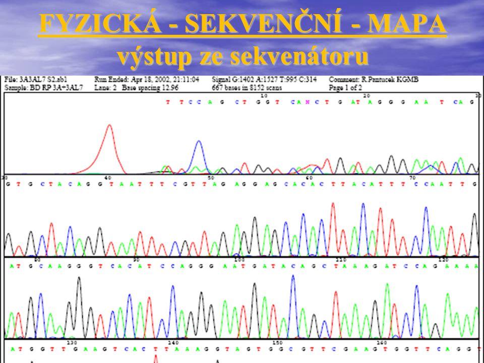 FYZICKÁ - SEKVENČNÍ - MAPA výstup ze sekvenátoru