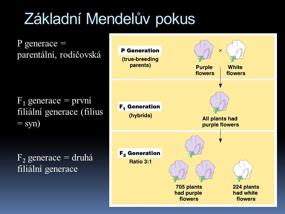 Základní Mendelův pokus
