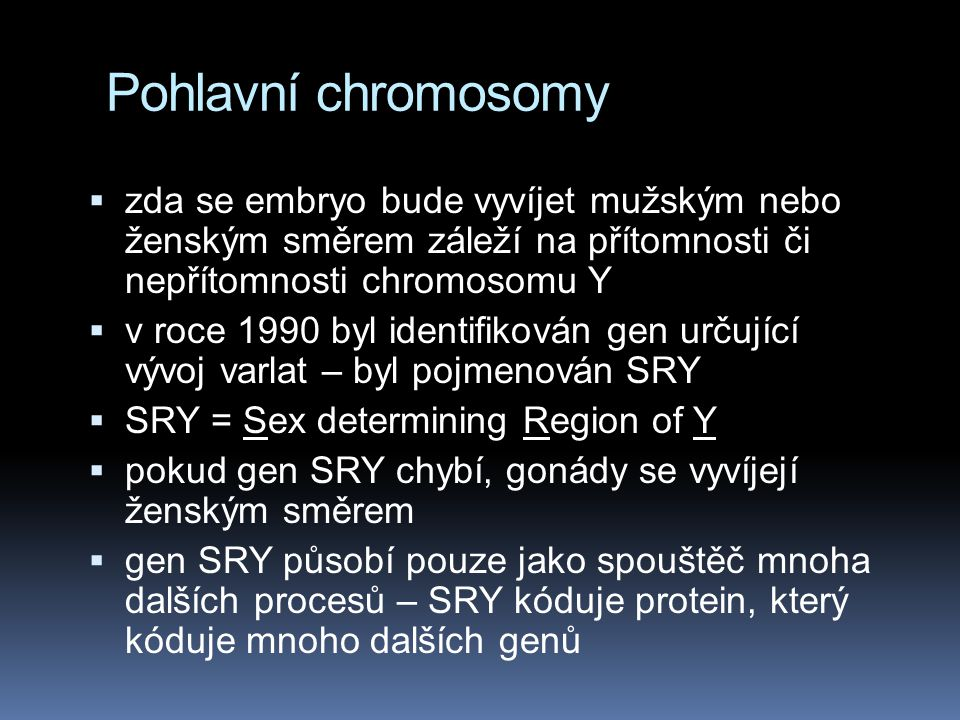 Pohlavní chromosomy zda se embryo bude vyvíjet mužským nebo ženským směrem záleží na přítomnosti či nepřítomnosti chromosomu Y.