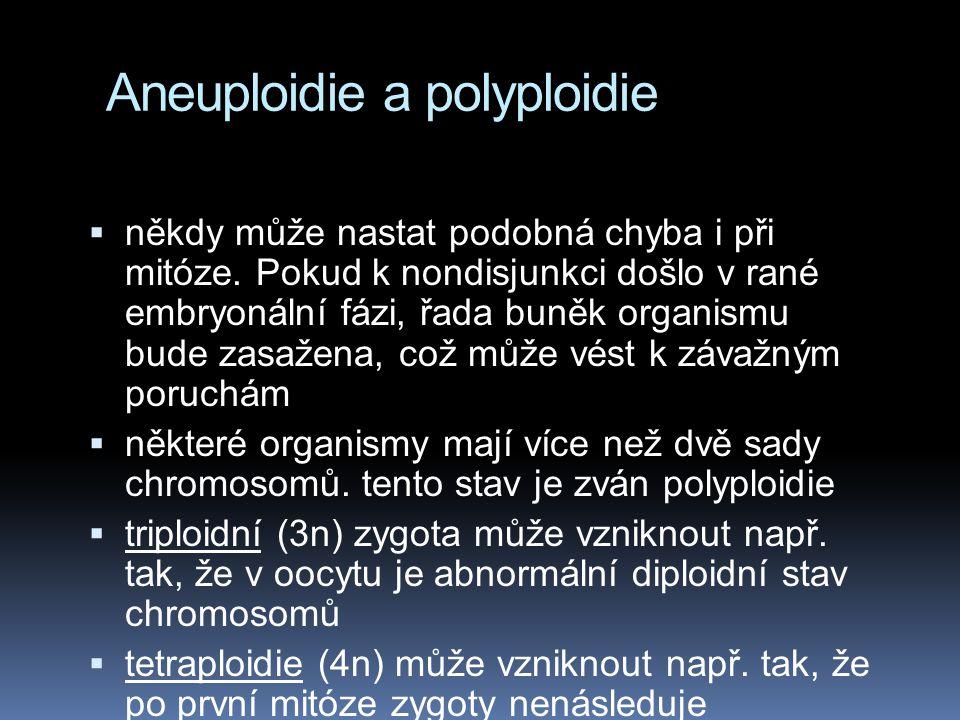 Aneuploidie a polyploidie