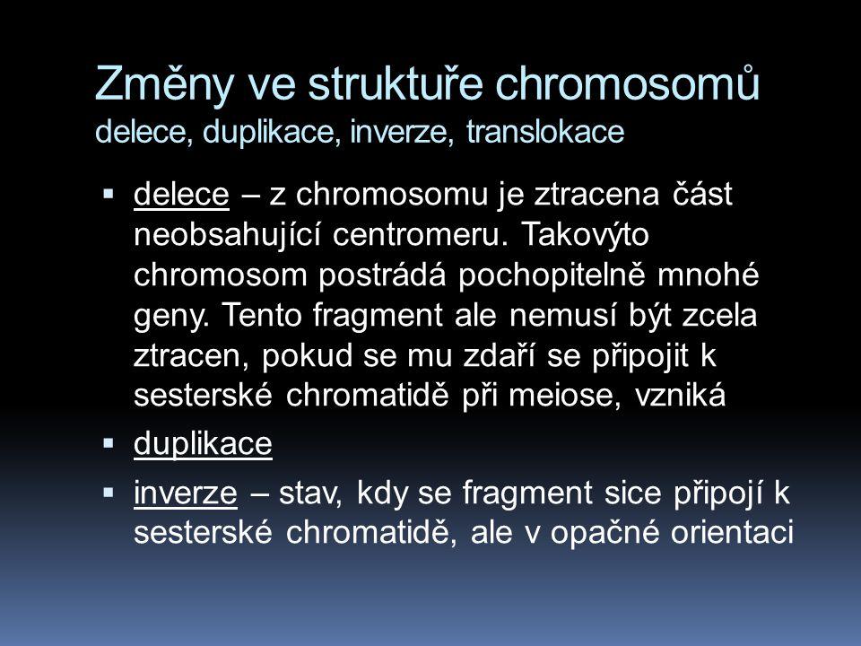 Změny ve struktuře chromosomů delece, duplikace, inverze, translokace