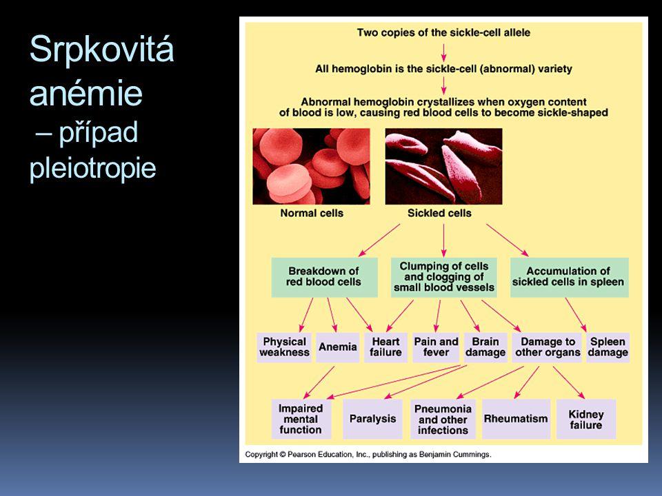 Srpkovitá anémie – případ pleiotropie